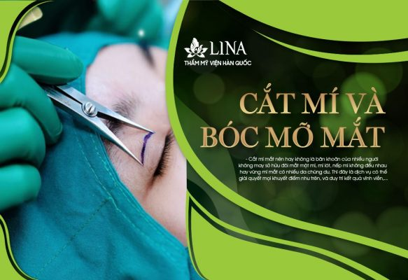 CAT MI VA BOC MO MAT